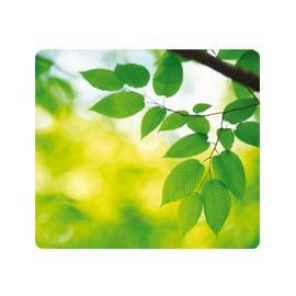 MOUSEPAD FOGLIE ecologici Earth Series™ Fellowes - conf. 1